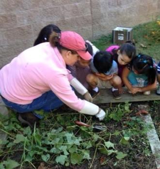 gardeningclass1