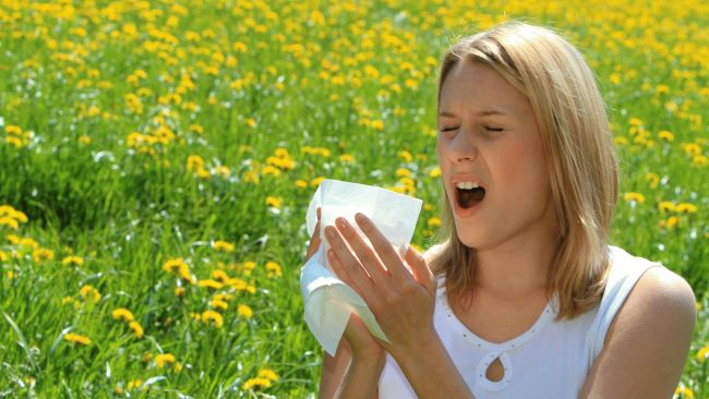 sneezing-reduce-your-allergy_650x366
